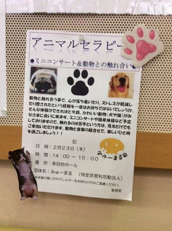 2017年2月23日(木)みゅーまるの横須賀市内の高齢者施設訪問♪