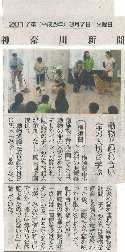 3/7(火)掲載の神奈川新聞
