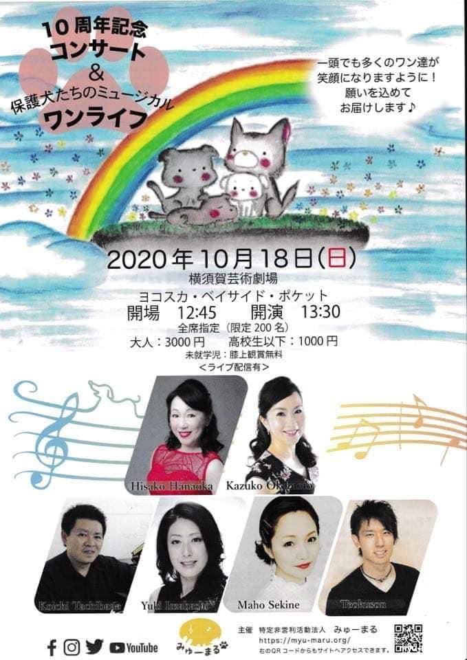 みゅーまる10周年記念コンサートのフライヤー